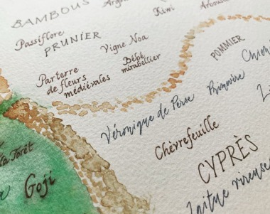 plan de jardin calligraphe paris